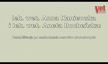Wykład: Rehabilitacja po uszkodzeniu nerwów obwodowych cz. II.